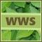 WWS.jpg
