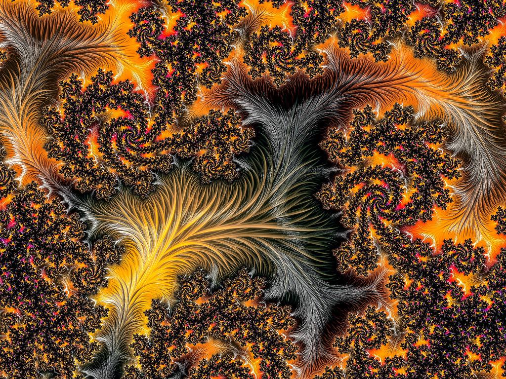 fractal001.jpg