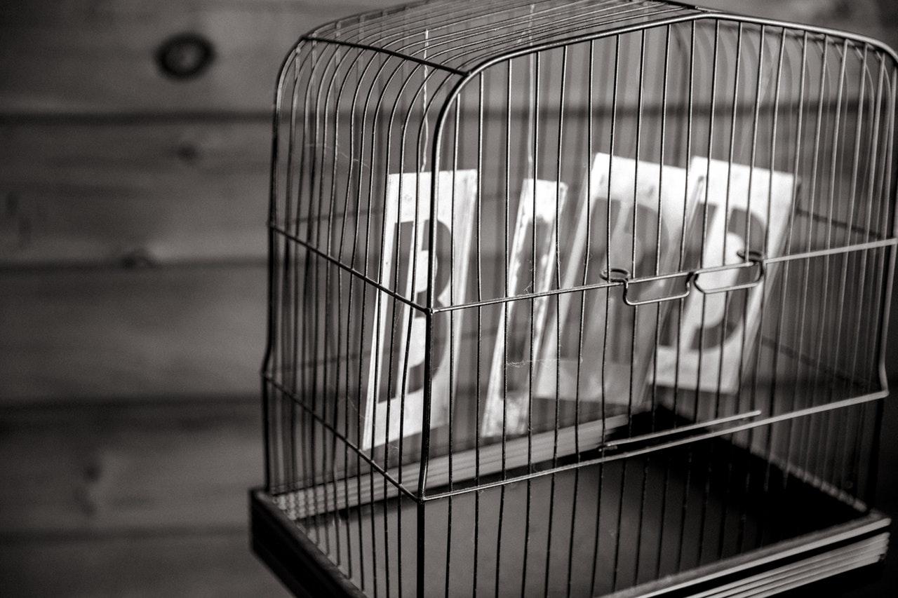 空鳥籠.jpg