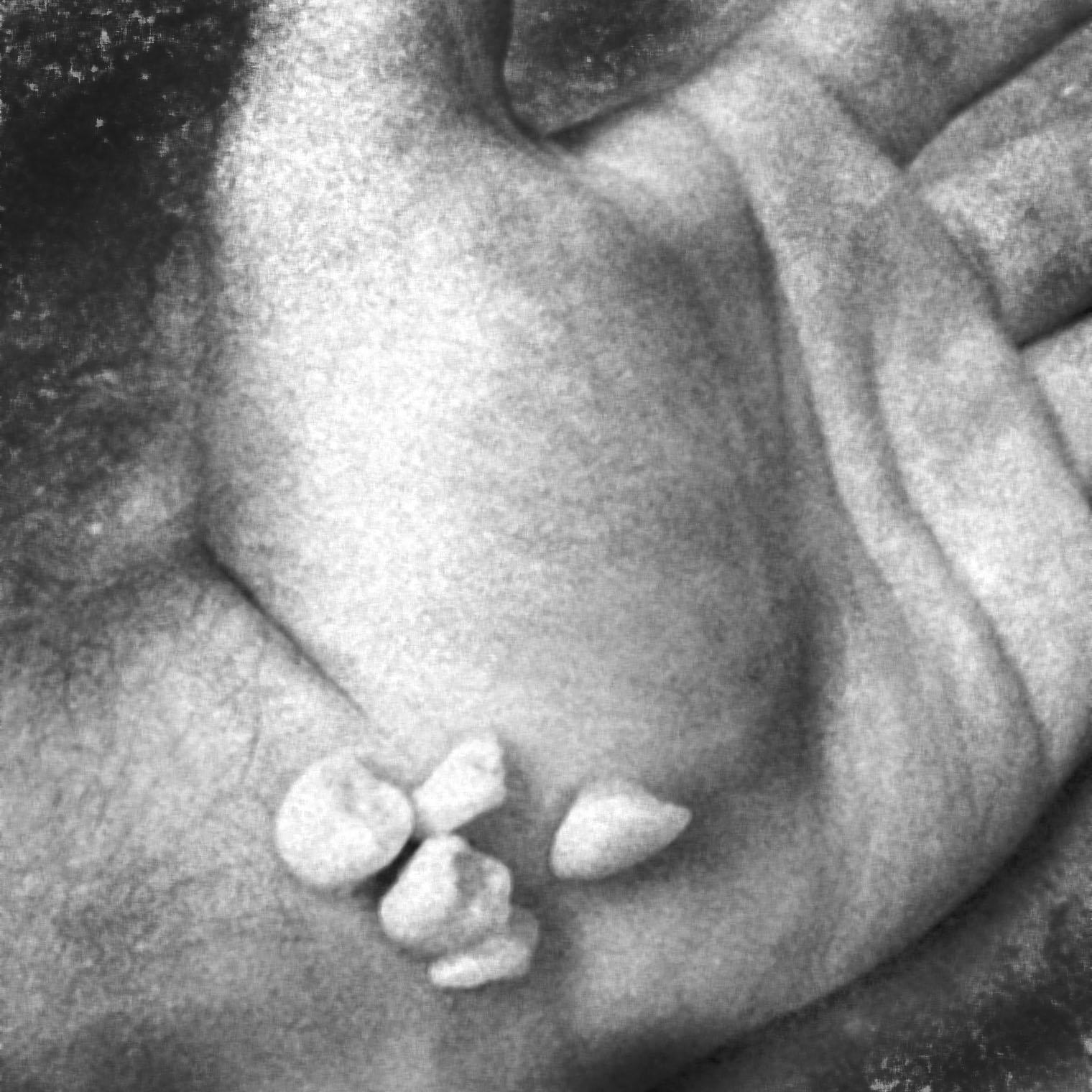 toothhand.jpg