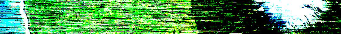 시큐리티 톤: 늙은 대나무 색 老竹色