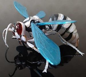 Wasp-soilence1.jpg