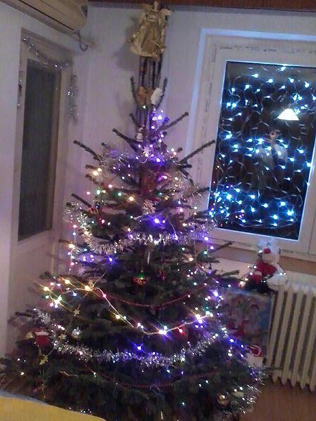 Romanian_tree.jpg