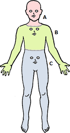 body-diagrams.png