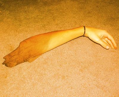 limb.jpg