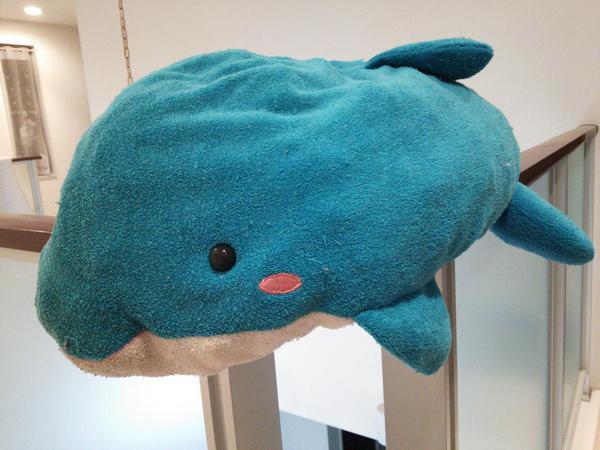 クジラくん.jpg