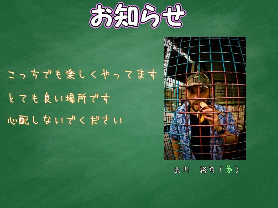 newoshirase.jpg